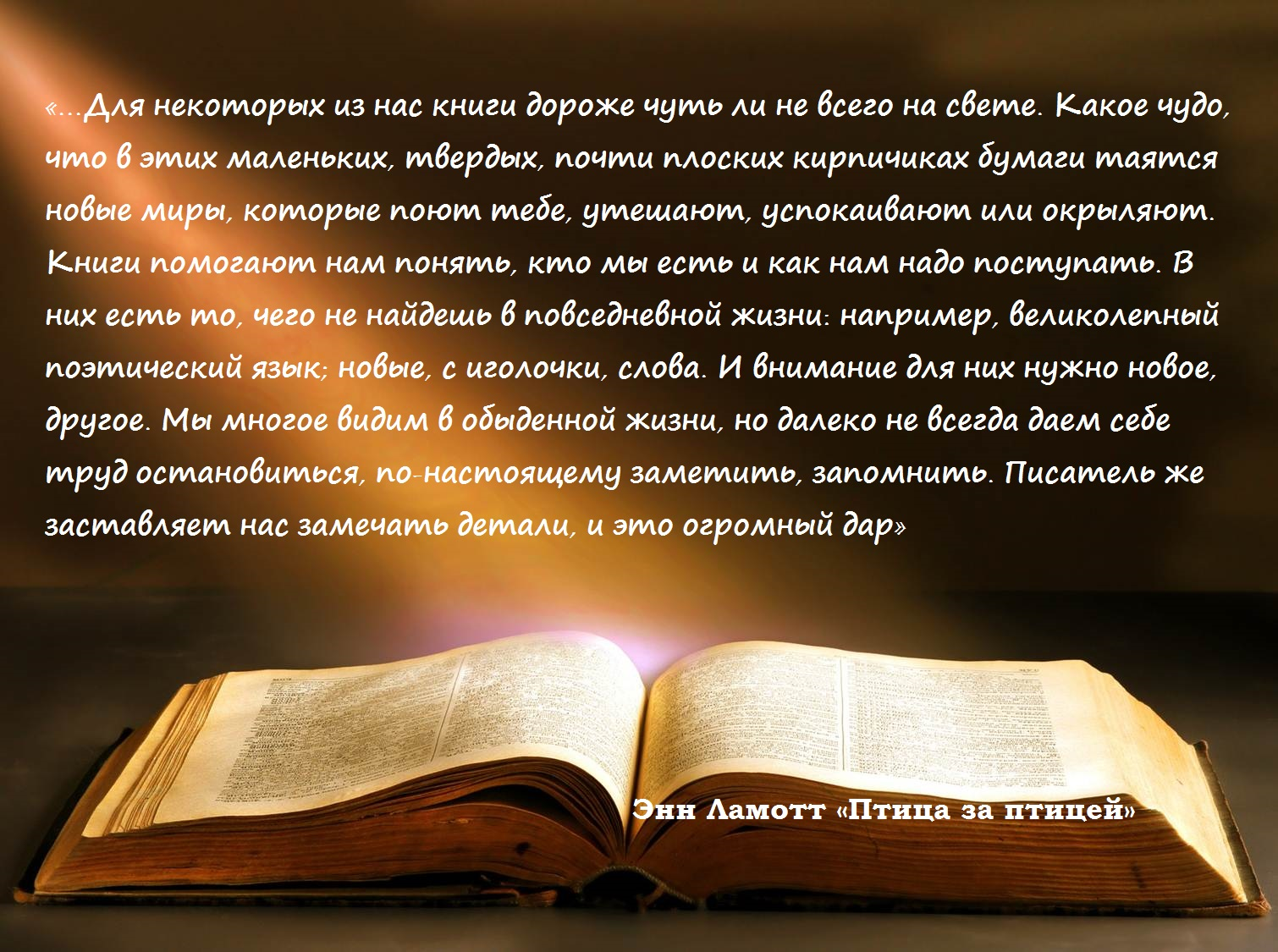 1000 причин любить книги | Блог издательства «Манн, Иванов и ...