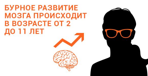 Чтение и литература: мозг3