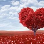 Любовь как лучшая стратегия успеха
