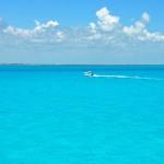 Карман, полный океана. Мысли о счастье, воде, физиологии и творчестве