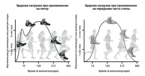 Иллюстрация из книги «Бегайте быстрее, дольше и без травм».
