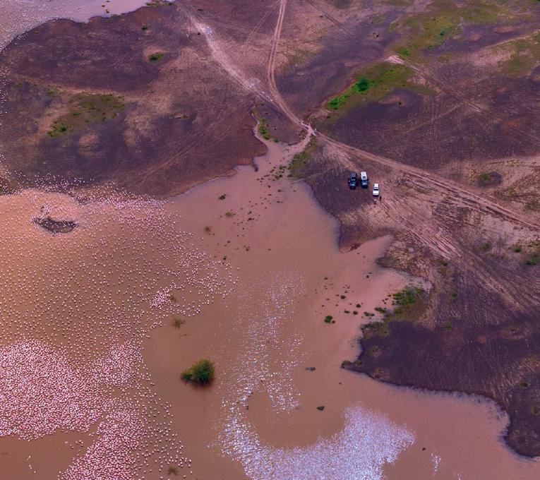 Кенийский национальный парк Масаи-Мара. Иллюстрация из книги «AirPiano. Мир с высоты»