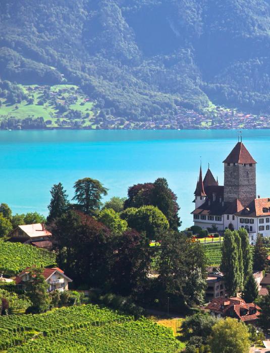 Швейцария. Иллюстрация из книги «Швейцарская кухня. Не только рецепты»