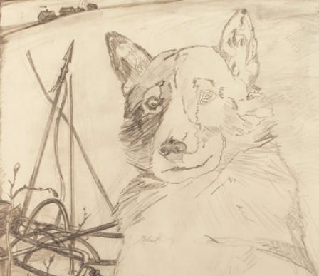 «Вожак моей упряжки», — иллюстрация из книги.