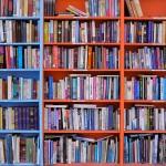 Литературные привычки: Ольга Соломатина