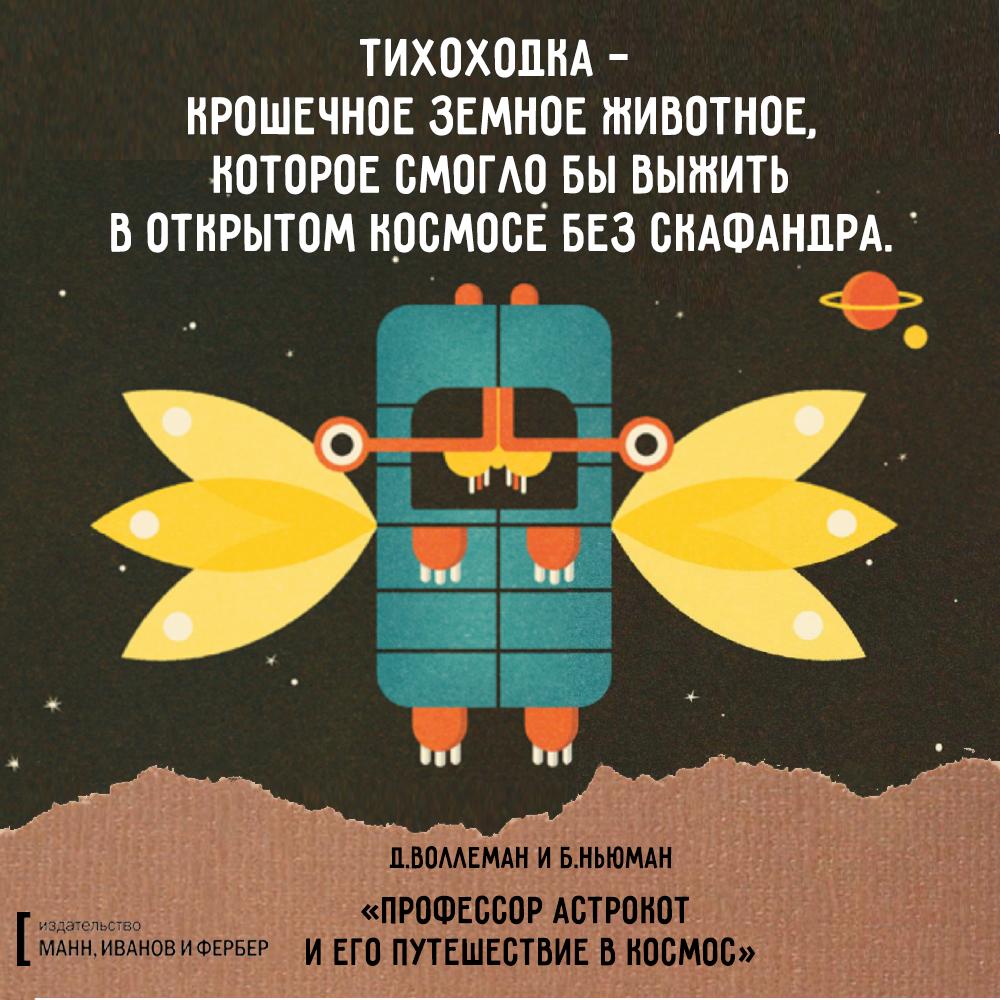 астрокот_макет6