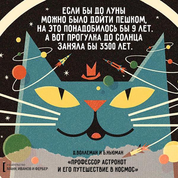 астрокот_макет