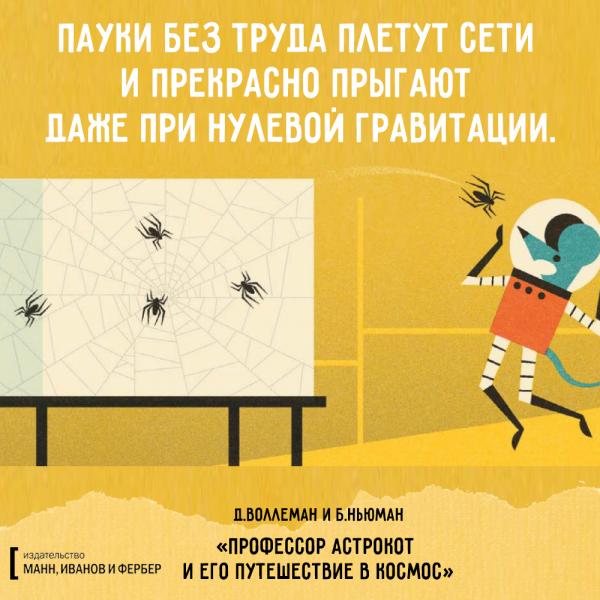 астрокот_макет14