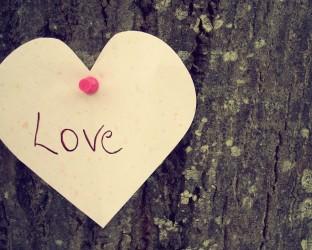 Love-Heart-on-a-Tree-1920x1200-wide-wallpapers.net
