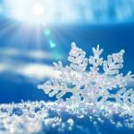 Почему снег — настоящее зимнее чудо?