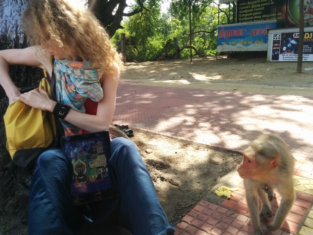 Книга про сородичей, «Без ума от обезьян», заинтересовала местное население гораздо больше, чем SCRUM :-)