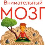 Выбор читателей: глава из книги «Внимательный мозг»