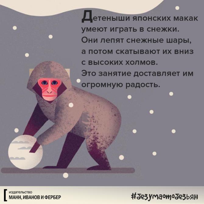 Без ума от обезьян – детская книга