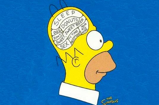 Строение мозга индивидуально,— источник.