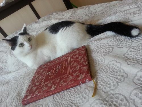 Вот так Гена читает книги
