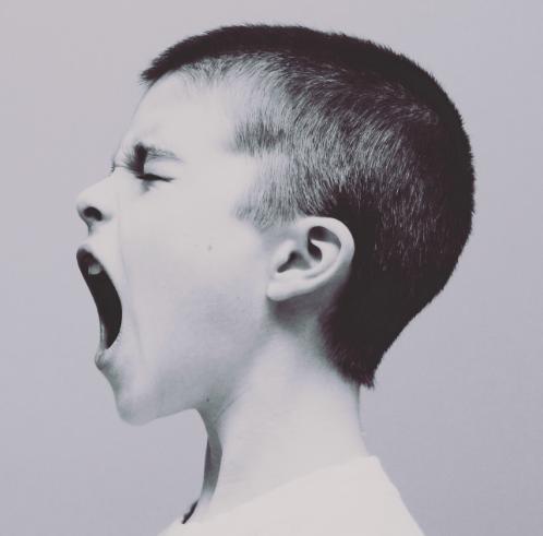 Научитесь правильно использовать свой голос. Источник.