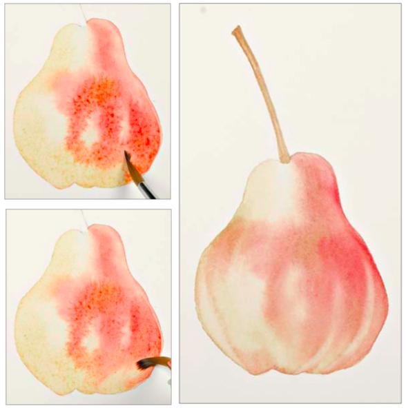 Груша в технике лессировки. — Иллюстрация из книги «Портреты фруктов и овощей»