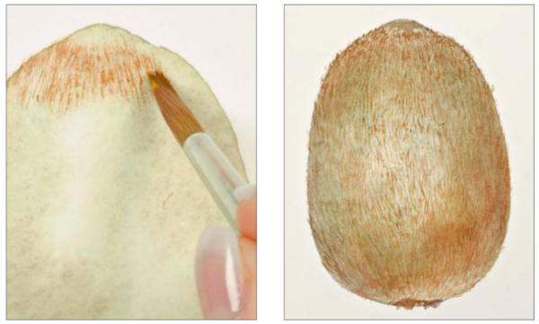 Работайте маленькими мазками в одном направлении, имитируя волоски на поверхности.