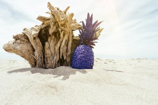 Делайте что угодно. Хоть раскрашивайте ананасы и делайте с ними фотосессии, – источник