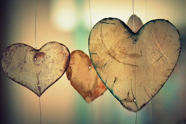 heart-700141_960_720 (1)