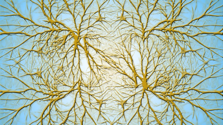 neurons-582052_1920