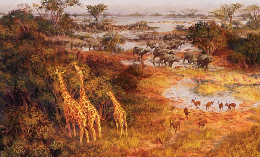 жирафа2