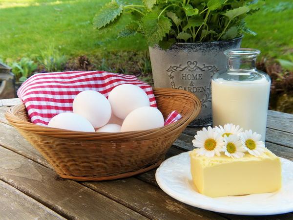 Молочныепродукты не укрепляют кости