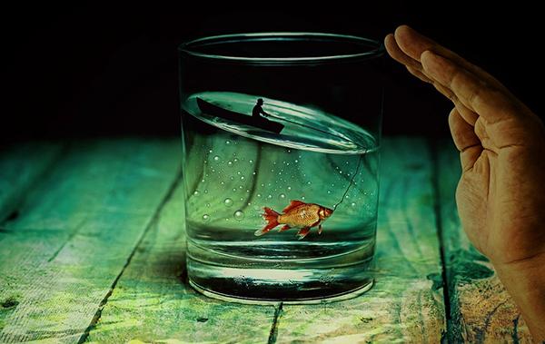 Преодолеть препятствия на пути к мечте, побороть «синдром самозванца», освоить новую привычку.