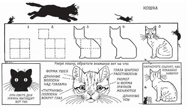 А вот схема от Эдвина Лутца