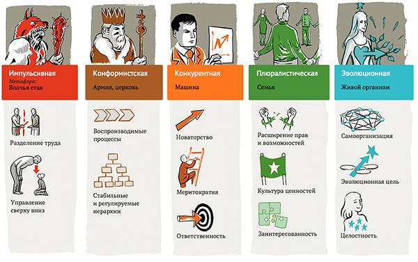 Пять стадий организаций