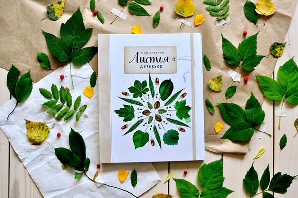 Авторы книги «Мой гербарий»: она будет значить для своего обладателя гораздо больше, чем просто книга