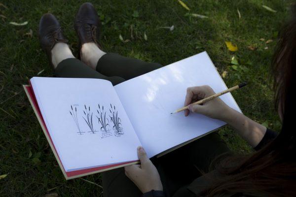 Что рисовать и как рисовать