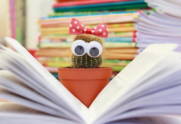 Школа требует знания фактов, а не умения творчески мыслить, хотя последнее намного важнее.