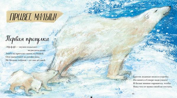 В 2017 году эта книга получила награду Royal Society's Young People's Book Prize как лучшая научная книга для детей. Автор книги — Никола Дэвис — лауреат литературных премий и автор множества детских книг, зоолог по образованию. Она занималась изучением китов и летучих мышей, работала на канале BBC «Живая природа».