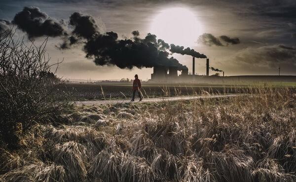 Спасение планеты: как помочь природе, не отказываясь от комфорта