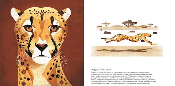 «Животные Юга» — это впечатляющий подарочный альбом с фантастическим плакатным иллюстрированием и фактами о животных, которые живут в Южном полушарии. В 2015 году книга вошла в список самых красивых книг Германии.
