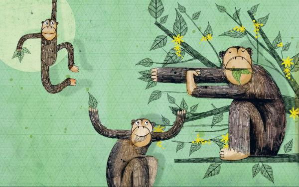 Шимпанзе очень сообразительные животные!