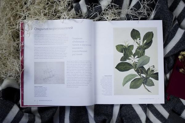 Наслаждение ботаникой. Влюбитесь в цветы и нарисуйте их все