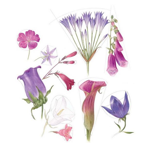 Как нарисовать цветок за 5 минут: 3 разные техники
