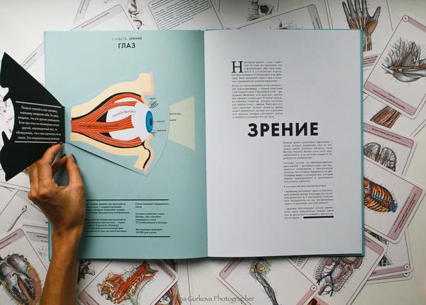 Автор книги Элен Дрювер — иллюстратор и дизайнер по бумаге. Это она придумала сделать картинки с помощью лазера. А вот за достоверностью данных следил её отец — врач с большим стажем Жан-Клод Дрювер.