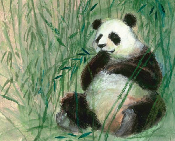 Знакомство малыша с невероятным миром животных может быть волшебным, если к новым знаниям добавить сказочные иллюстрации и легкие стихи