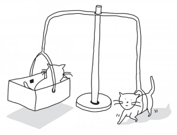 Малышей сажали в своеобразную крутящуюся карусель по двое, но с принципиальной разницей. Несмотря на то что оба котенка были в одной карусели, один из них двигался свободно, а второй сидел в корзине и не мог шевелиться, но при этом он видел все, что происходило.