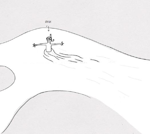 Вы гений передвижения в потоке! Иллюстрация из «Книги ленивого гуру»