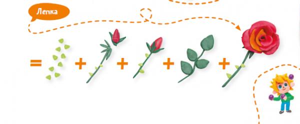 Цветок состоит из стеблевой части (цветоножка и цветоложе), листовой части (чашелистики, лепестки) и генеративной части (тычинки и пестики).