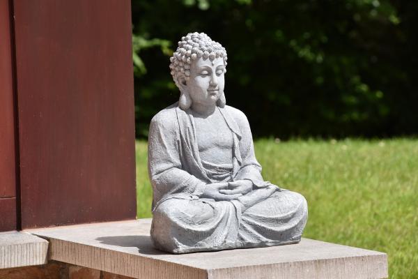 Вы, вероятно, знаете, что санскритское слово «Будда» означает того, кто полностью пробудился.