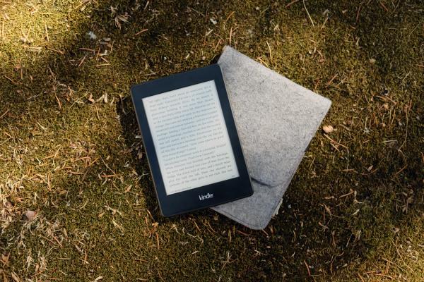 Электронные книги имеют сегодня много плюсов. Они гораздо дешевле бумажных книг, не занимают места и всегда с собой