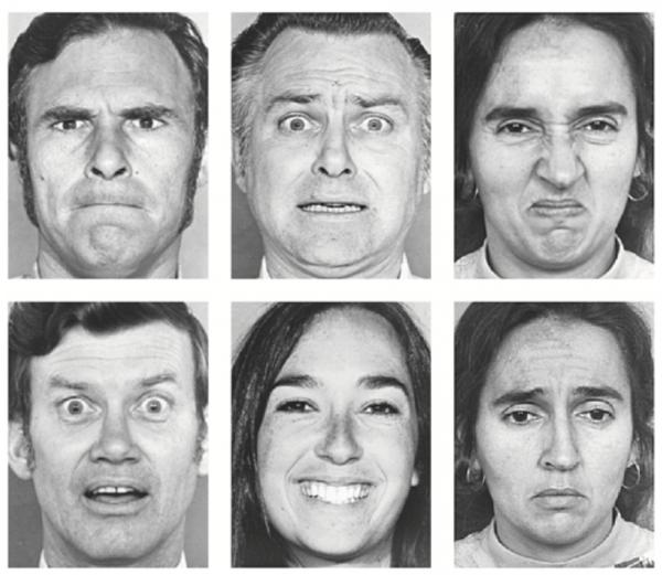 Некоторые фотографии лиц, использованные при исследовании методом базовых эмоций