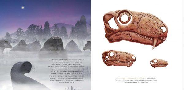 Местные жители верили, что это скелет животного, которое не поместилось в Ноев ковчег.