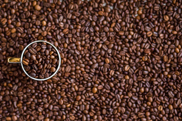 Страх может пробудить вас и дать такую ясность ума, какая бывает после хорошего сна или дозы кофеина.