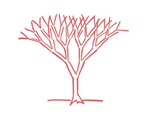 Это дерево из другой книги — «Рисуй, чтобы победить». Но это не важно, потому что оно точь-в-точь как дерево выбора.